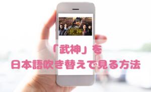 武神を日本語吹き替えで見るなら?無料動画やDVDをチェック