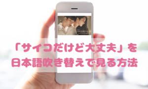 サイコだけど大丈夫日本語吹き替え動画の視聴方法!Netflix以外の無料動画やDVDもチェック