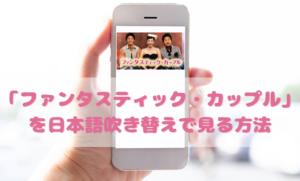 ファンタスティックカップルを日本語吹き替えで見るなら?無料動画やDVDをチェック