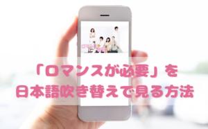 ロマンスが必要を日本語吹き替えで見るなら?無料動画やDVDをチェック