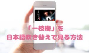 一枝梅(イルジメ)を日本語吹き替えで見るなら?無料動画やDVDをチェック