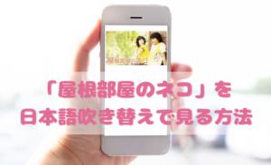 屋根部屋のネコを日本語吹き替えで見るなら?無料動画やDVDをチェック