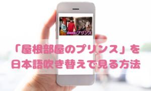 屋根部屋のプリンスを日本語吹き替えで見るなら?無料動画やDVDをチェック