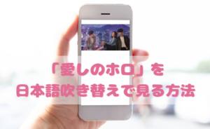 愛しのホロの日本語吹き替え動画の視聴方法!Netflix以外の無料動画やDVDもチェック