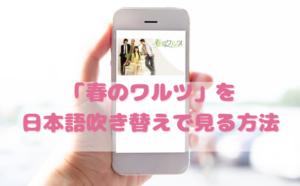 春のワルツを日本語吹き替えで見るなら?無料動画やDVDをチェック