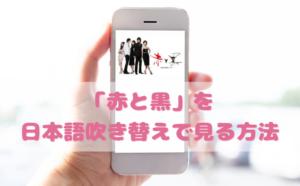 赤と黒を日本語吹き替えで見るなら?無料動画やDVDをチェック
