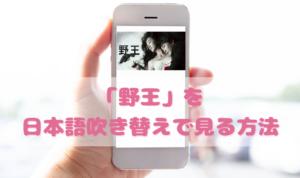 野王を日本語吹き替えで見るなら?無料動画やDVDをチェック